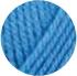 31-irisblauw
